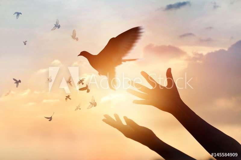 Liefde … van de Heilige Geest